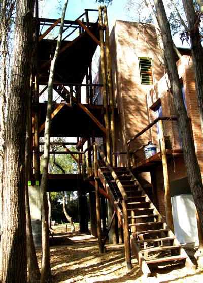 Arquimaster Com Ar Proyecto La Casa Del 193 Rbol Delta